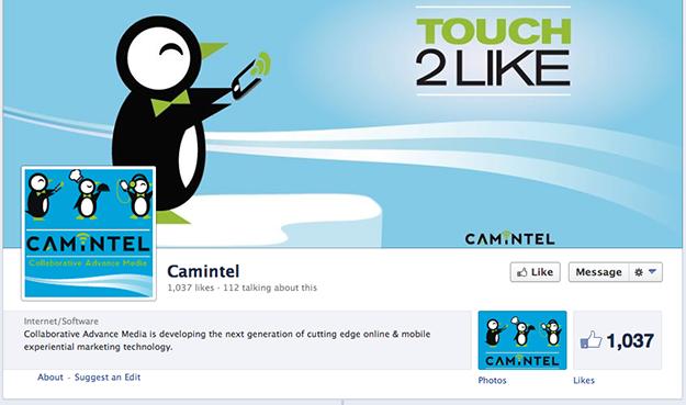 Camintel Penguin Logo