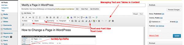 Text WordPress Tutorial